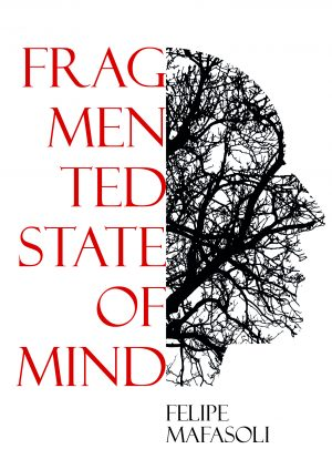 Fragmented State of Mind e-boek