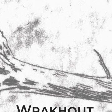 Boek in de kijker: Wrakhout van Peter De Rick